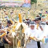 Produksi Jagung di Jatim Surplus Hingga 1,6 Juta Ton