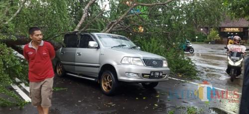 Hujan Disertai Angin, Pohon Tumbang Timpa Mobil