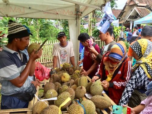 Pengunjung saat memilih durian di salah satu stand di Bazar Durian dan Bibit Pohon,Dusun Kasin, Desa Jombok, Kecamatan Ngantang, Kabupaten Malang,Minggu (1/3/2020) (Foto: Irsya Richa/MalangTIMES)