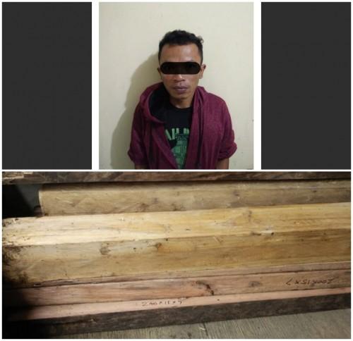 Tersangka Wiji diamankan pihak Polsek Tirtoyudo bersama barang bukti 15 batang kayu.