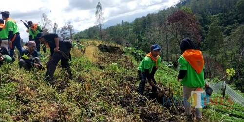 Pasca Serangan Reboisasi 1 Maret 2020, FRB Desak Alih Fungsi Lahan Diproses Hukum