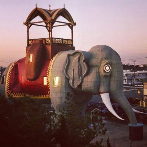 Uniknya Penginapan Berkonsep Gajah, Bangunannya Sudah Berumur 139 Tahun