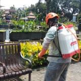 Fasilitas Umum Disemprot Disinfektan, Pasar Hingga Mal Jadi Sasaran Petugas