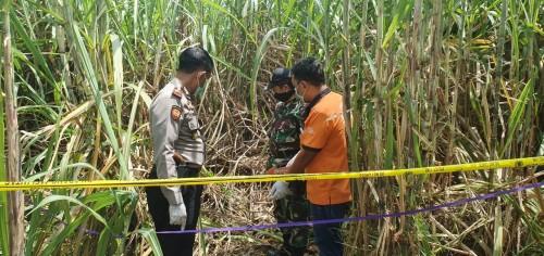 Proses olah TKP penemuan kerangka manusia di Desa Catakgayam, Kecamatan Mojowarno, Kabupaten Jombang. (Istimewa)