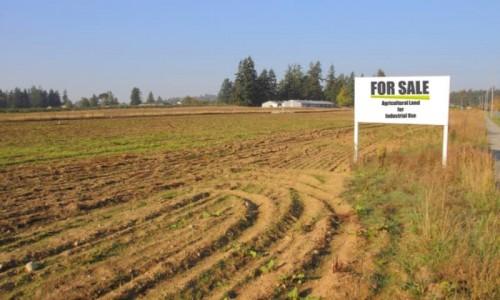 Ilustrasi tanah dijual (humanikoncoid)