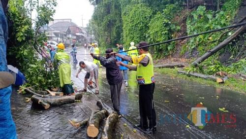 Petugas saat berupaya mengevakuasi pohon tumbang. (Foto : Polsek Wagir for MalangTIMES)