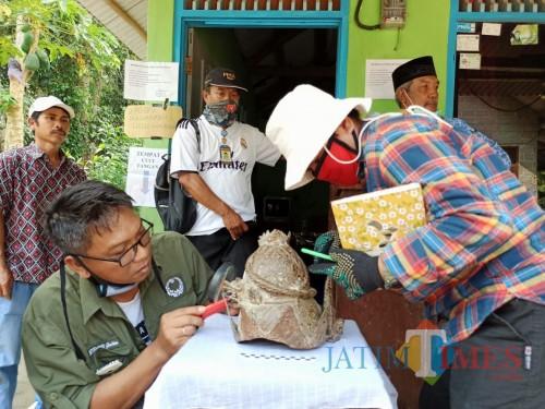 BPCB Trowulan memeriksa mahkota logam yang ditemukan warga Ponggok Blitar