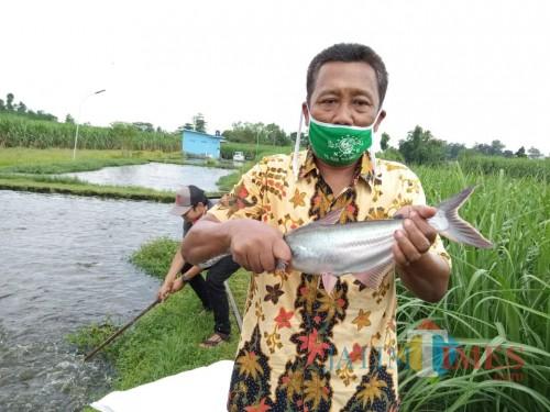 Ribuan Ton Ikan Asal Tulungagung Terancam Tak Terjual, 3 Ribu Lebih Peternak Terdampak