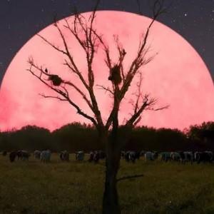 Pergerakan Fenomena Benda Langit Sepanjang Bulan Mei 2020, Supermoon Terakhir Tahun Ini