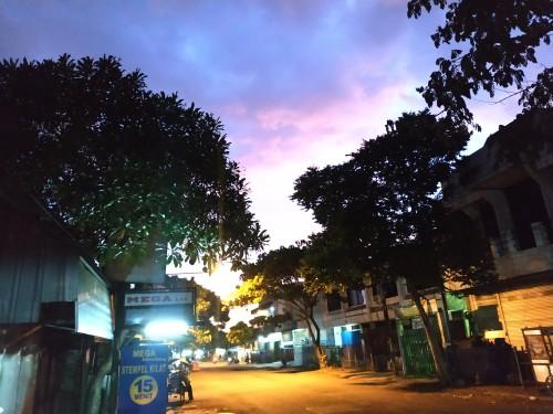 Salah satu sudut jalanan di Kota Malang yang banyak tumbuhan dan sedang sepi kendaraan (Hendra Saputra)