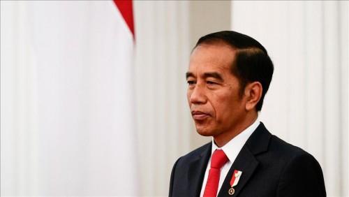 Presiden Joko Widodo (Foto:   Anadolu Agency)
