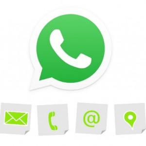 Kontak WhatsApp Mendadak Hilang? Ini 5 Cara Cepat dan Mudah untuk Mengembalikannya