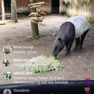 Lewat Virtual Trip, Jawa Timur Park 2 Ajak Penonton Ikut Rayakan Ultah ke-2 Sila