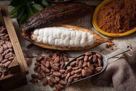Kakao (Foto:  Hello Sehat)