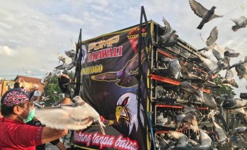 Lepas 1.188 Burung Merpati Terbang Perdana, Bupati Ponorogo Harap Aktivitas Warga Pulih
