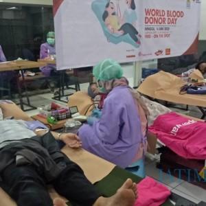 Menipis, Stok Darah PMI Kota Malang Hanya Tersisa untuk 4 Hari ke Depan