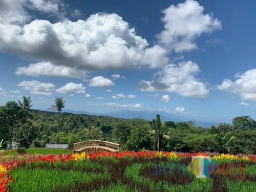 Sepuluh Destinasi Banyuwangi Masuk Tahap Simulasi Songsong New Normal