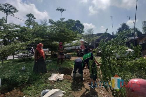 Jembatan Kedungkandang Dibangun, DLH Kota Malang Pindahkan 70 Pohon