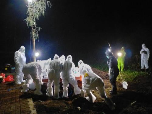 Petugas saat memakamkan pasien meninggal positif covid-10 beberapa saat lalu di Desa Giripurno, Kecamatan Bumiaji. (Foto: istimewa)