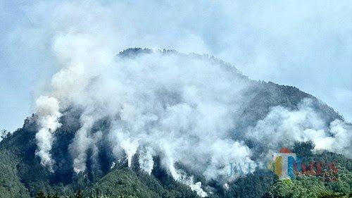 Gunung Panderman saat kebakaran pada tahun 2019.