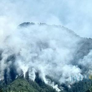 Masuk Kemarau, Angin Kencang dan Kebakaran Hutan Intai Kota Batu