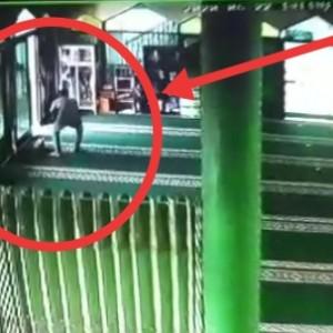 Usai Salat di Masjid, Wanita ini Mendapati Tasnya Diobok-obok Maling