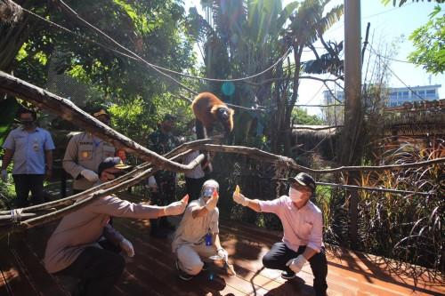 Wakil Wali Kota Batu Punjul Santoso saat memberikan makan pada satwa di Batu Secret Zoo, Sabtu (27/6/2020). (Foto: Jatim Park Group)