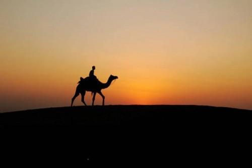 Kisah Bapak dan Anak yang Berlomba Sedekah, Ditegur Abu Bakar dan Umar karena Berlebihan