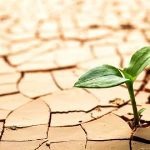 Kemarau, Sebagian Kecil Wilayah Malang Diprediksi Miliki Kapasitas Air Tanah Sedang