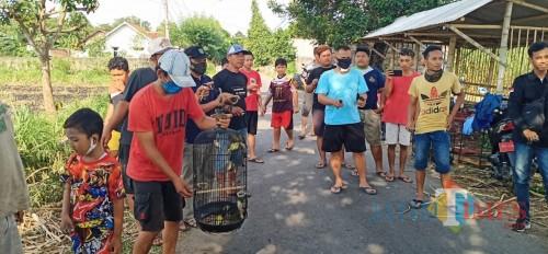 Komunitas pecinta satwa dan lingkungan melepaskan berbagai macam hewan ke alam liar (Eko Arif/JatimTimes)