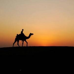 Tak Lagi Turun ke Medan Perang Saat Masa Perjuangan Islam, ini Alasan Usamah bin Zaid