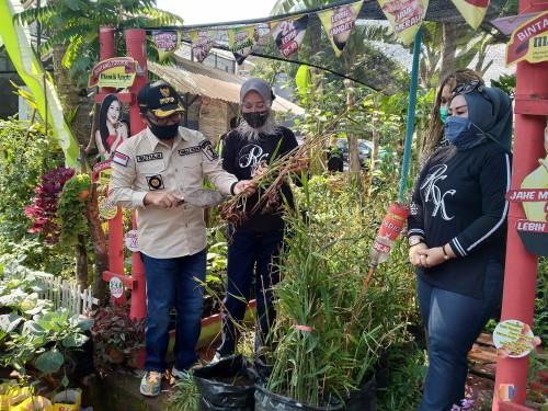 Sutiaji Gencar Kuatkan Gerakan Malang Herbal