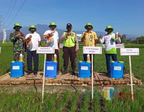 Dinas pertanian melakukan penyemprotan (muhlis/JatimTIMES)