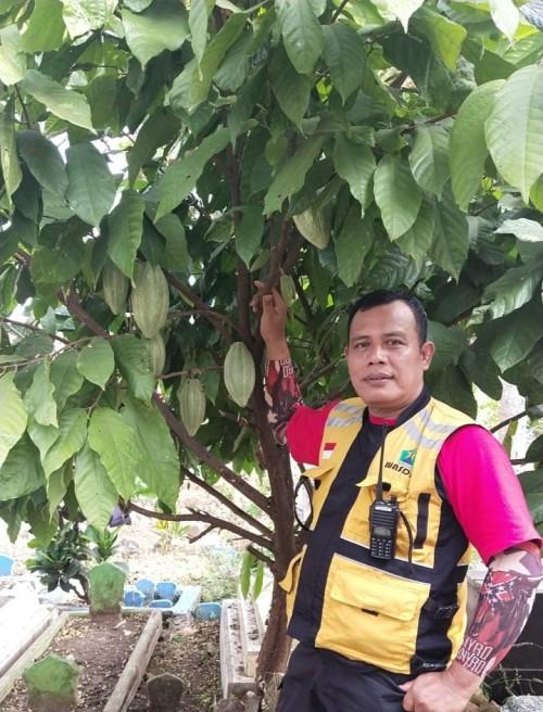 Kepala UPT PPU Takroni Akbar saat tengah menunjukkan pohon coklat di kawasan TPU Mergan (UPT PPU)