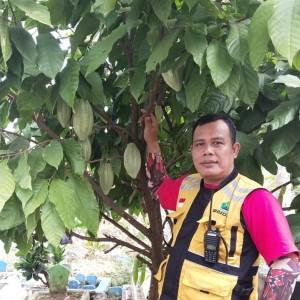 Setelah Kopi,  Giliran Cokelat Tumbuh Subur di Pemakaman Umum  Kota Malang