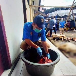 9 Hewan Kurban Disembelih di Polresta Malang Kota, Begini Hasil Pemeriksaan Tim Dokter UB