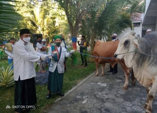 Penyerahan secara simbolis dua ekor sapi kurban kepada wakil takmir Masjid Baitul Hakim Kota Madiun ,KH Zainal Abidin.