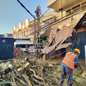 Pohon Tumbang di Jalan BS Riadi, Arus Lalu Lintas Dialihkan