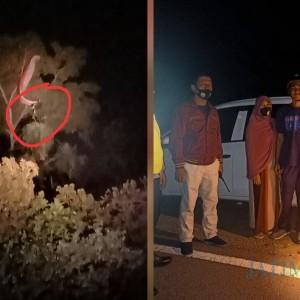 Nyangkut di Pohon Berjam-jam, Atlet Paralayang di Tulungagung Berhasil Dievakuasi