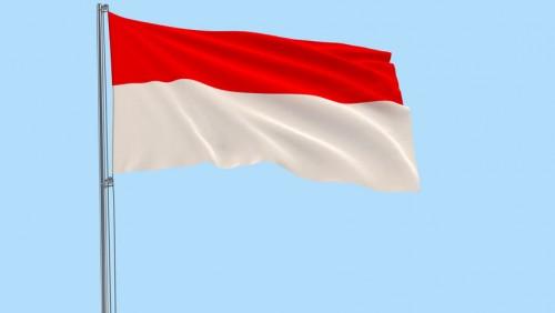 Viral Bendera Merah Putih Dibakar di Lampung, Pelaku Diduga Gangguan Jiwa!
