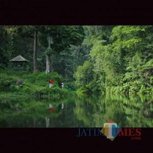 Berhias Anggrek Danau Linggo Rekisi Pronojiwo, Jadi Spot Foto Menarik
