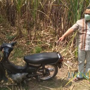 Polisi Pastikan Mayat di Kebun Tebu Esk PG Kunir Meninggal Akibat Bunuh Diri