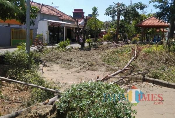 Penebangan Dahan Pohon di Taman Gladak Anyar Dianggap Berlebihan, Pengunjung Protes