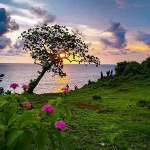 Rindu Nikmati Golden Sunset, 5 Pantai di Gunung Kidul Yogyakarta Pilihannya