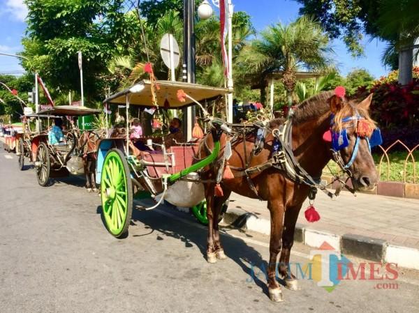 Dokar wisata Kota Batu di Alun-Alun Kota Batu. (Foto: Irsya Richa/MalangTIMES)