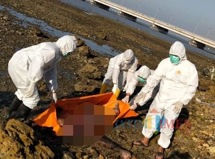 Mayat Tanpa Busana Ditemukan di Pesisir Pantai, Kondisi Mayat Mulai Membusuk