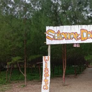 Gaet Pengunjung di Wisata Hutan Cemara, Ini Upaya Mahasiswa Unikama