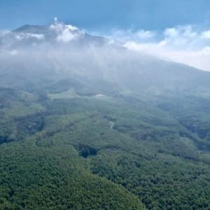 Rindu Mendaki Gunung Arjuno? Jalur Sumber Brantas Sudah Buka