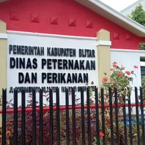 Tertular Dokter Hewan, 6 ASN Dinas Peternakan Pemkab Blitar Dilaporkan Positif Covid-19