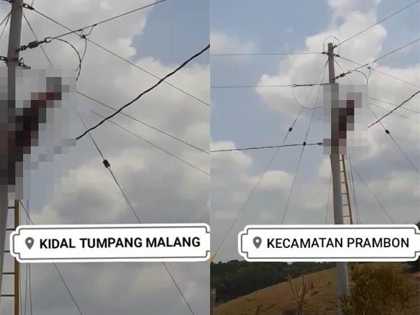 Potongan video yang menunjukkan orang yang sama tersengat listrik, namun dengan keterangan tempat berbeda (Istimewa)